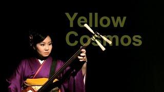 斉藤理歩/yellowcosmos