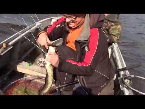 ловля леща на волхове на фидер видео