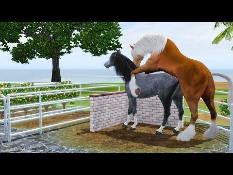 Xxx Mp4 Horse Breeding Sims 3 3gp Sex