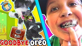 SAYING GOODBYE TO PUPPY & Hello to Mikes New BRACES! FUNnel Vision Vlog