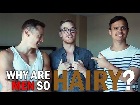 Xxx Mp4 Why Are Men So Hairy Ft DaveyWavey 3gp Sex