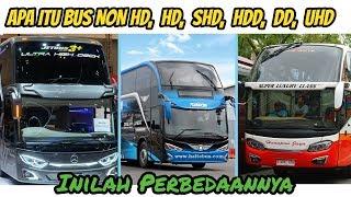 Perbedaan BUS NON HD, HD, SHD, HDD, DD, Dan UHD