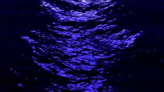 কেমনে দিবা জাহান্নামে ফেলিয়া- Bangla heart-touching Islamic song