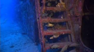 underwater hd footage  - ,free video download
