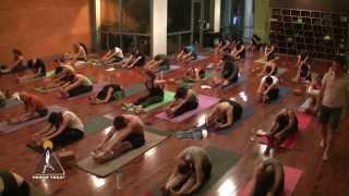Yin Yoga (FULL Class) with Travis Eliot