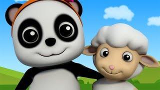 Mary Had A Little Lamb   Nursery Rhymes For Children   Baby Songs   Baby Bao Panda
