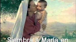 maria mi maria - Andres pabon
