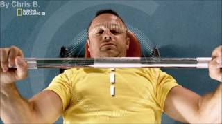 Science of Stupid Staffel 2 - Folge 11 in Full HD