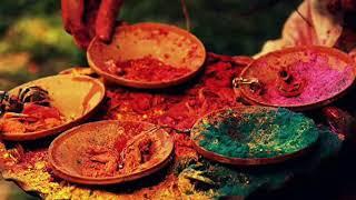 Aaj ke Doler Hindolaye...(Nazrulgeeti)Artist: Sudokshina Manna Chatterjee
