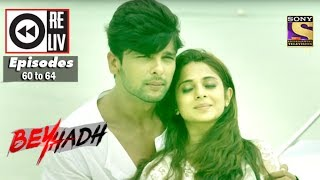 Weekly Reliv | Beyhadh | 2nd Jan to 6th Jan 2017 | Episode 60 to 64