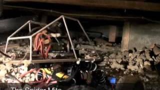 Inspection Robot- Spider Mite Capabilities DEMO