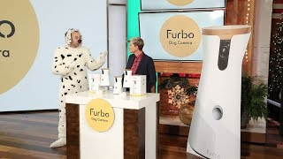 Furbo Is a Treat for Dogs and Owners Alike!