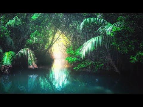 Xxx Mp4 6 Hours Of Relaxing Sleep Music Soothing Harp Music Fall Asleep Fast Sleeping Music ★80 3gp Sex