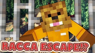 MY BRAND NEW SERVER BACCA ESCAPE - LUCKY WARS, RIOTS, AND BATTLEDOME