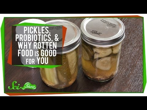 Pickles Probiotics and Why Rotten Food Is Good For You