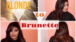 Blonde to Brunette Hair Makeover! | Brittney Gray