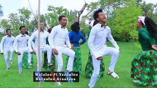 Hacaaluu Araarsaa: Jarumaafi  ** Oromo Music 2018 New