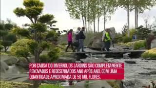 o mundo segundo os brasileiros Noruega parte 2 14 08 2015 mircmirc