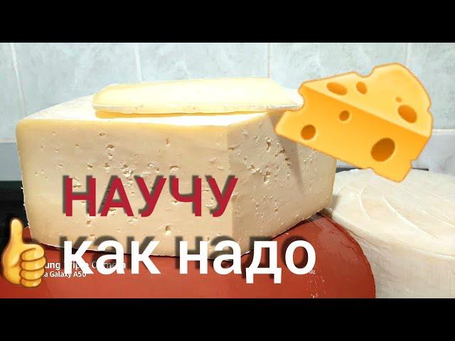 Как сделать простой сыр из коровьего молока