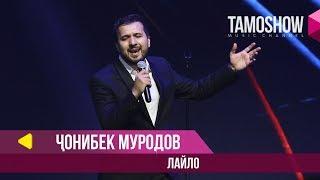 Чонибек Муродов - Лайло / Tamoshow Music Awards 2019