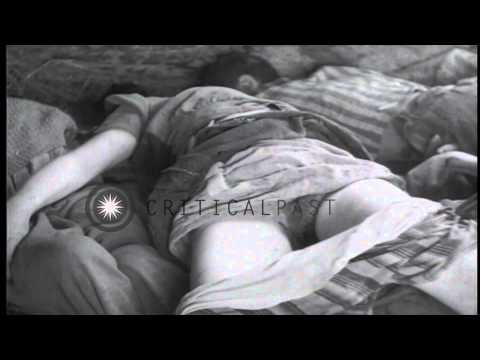Xxx Mp4 Dead Bodies Of Inmates In A Railroad Car At The Dachau Concentration Camp In Germ HD Stock Footage 3gp Sex