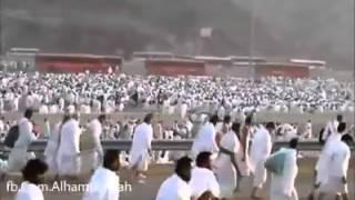 Saudi Arabia hazz