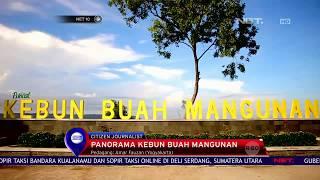 Panorama Kebuh Buah Mangunan Yogyakarta - NET 10