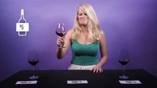 Normal People Try To Guess Cheap Wine From Expensive Wine