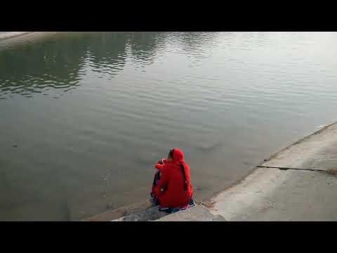 Xxx Mp4 Bagh E Bahu Jammu Park 3gp Sex