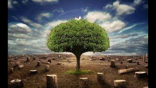 عبيد العوني يشارك بحملة تشجير حريملاء  - زراعة الصحراء وقفة رجال في وجة التصحر