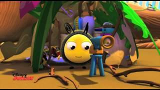 The Hive - BuzzBee