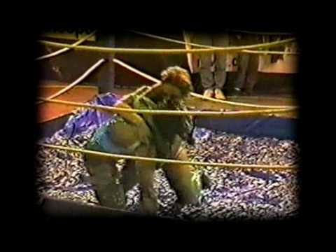 Brazilian Women wrestling Mulheres no gel 5