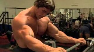 Arnold in Gym   Arnold Schwarzenegger Bodybuilding Wallpapers Posters and Pictures   Arnold Schwarzenegger Gym Body and Exercising Pictures Young Age   desihotmasala com