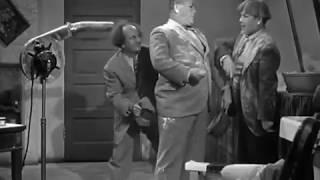 The Three Stooges Cookoo Cavaliers