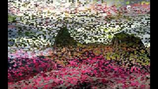 doob HABIB WAHID projapoti movie song TOMAR MAJHE JIBON