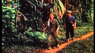 Tiếng hát giữa rừng Pác Bó - Lan Anh | Tết Độc Lập 2015