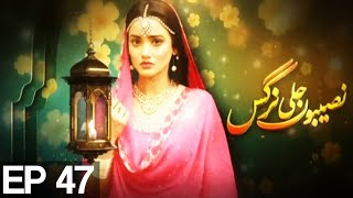 Naseboon Jali Nargis - Episode 47  Express Entertainment uploaded on 16 day(s) ago 1358 views