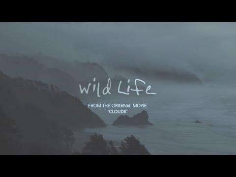 OneRepublic Wild Life Lyric Video