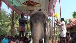 Thiruvambady Chandrasekharan Height