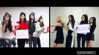 SNSD 'SPLIT PERSONALITY' FUNNY 2013