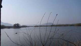 Ranthambhore National Park , Sawai Madhopur  Maansoon Season