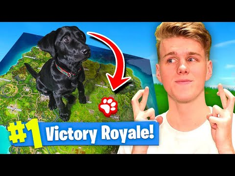 Using A PUPPY To WIN FORTNITE Battle Royale