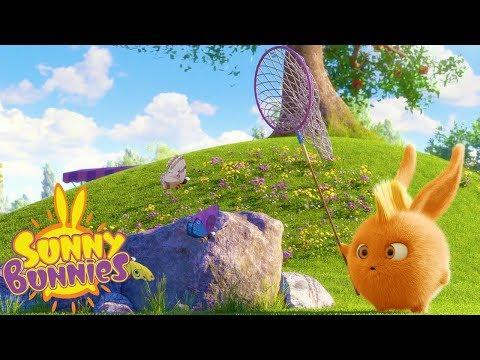 Xxx Mp4 Cartoons For Children SUNNY BUNNIES CATCHING BUTTERFLIES Funny Cartoons For Children 3gp Sex