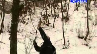 GRIL BERS - DISKOVERI