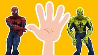 Spiderman Finger Family Song  Nursery Rhymes Finger Family Spiderman | Spiderman Cartoon Kids Song
