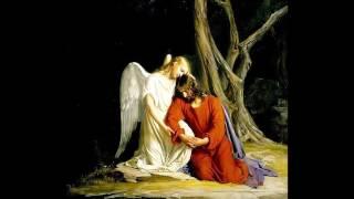 انجيل القديس يوحنا مرتل رائع جدا