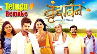 Vrundavan | Upcoming Marathi Movie | Remake Of A Hit Telugu Film | Ashok Saraf | Raqesh Bapat