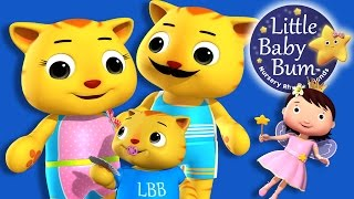 Make A Wish | Nursery Rhymes | Original Song By LittleBabyBum!