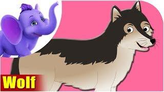 Wolf - Animal Rhymes in Ultra HD (4K)