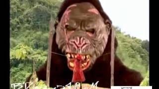 Banglar King Kong Movie trailer by [BDsong24.com]